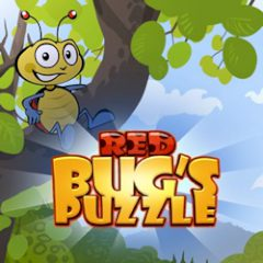 Red Bug's Puzzle