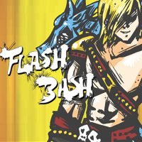 Flash Bash