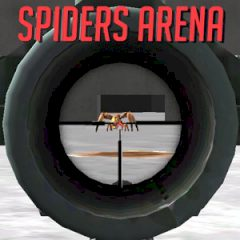 Spiders Arena