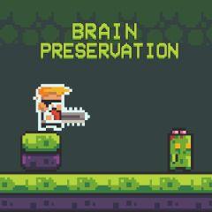 Brain Preservation