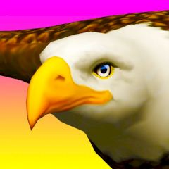Eagle Ride