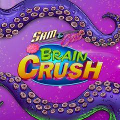 Sam & Cat Brain Crush