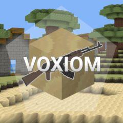 Voxiom IO