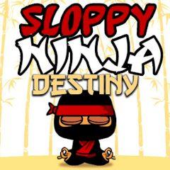 Sloppy Ninja Destiny