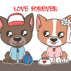 Cute Puppy: Love forever