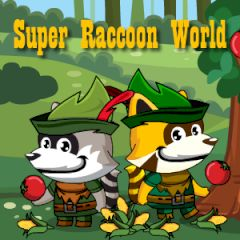 Super Raccoon World
