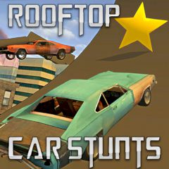 Rooftop Car Stunts