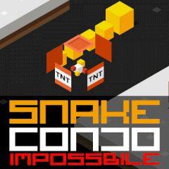 Snake Condo Impossible