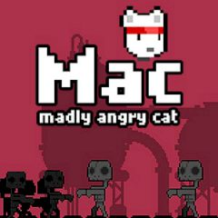 Mac Madly Angry Cat