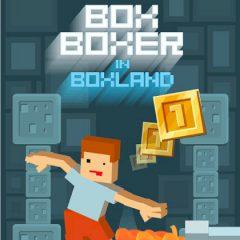 Box Boxer in Boxland