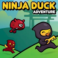 Ninja Ducks Adventure