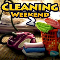 Cleaning Weekend 2
